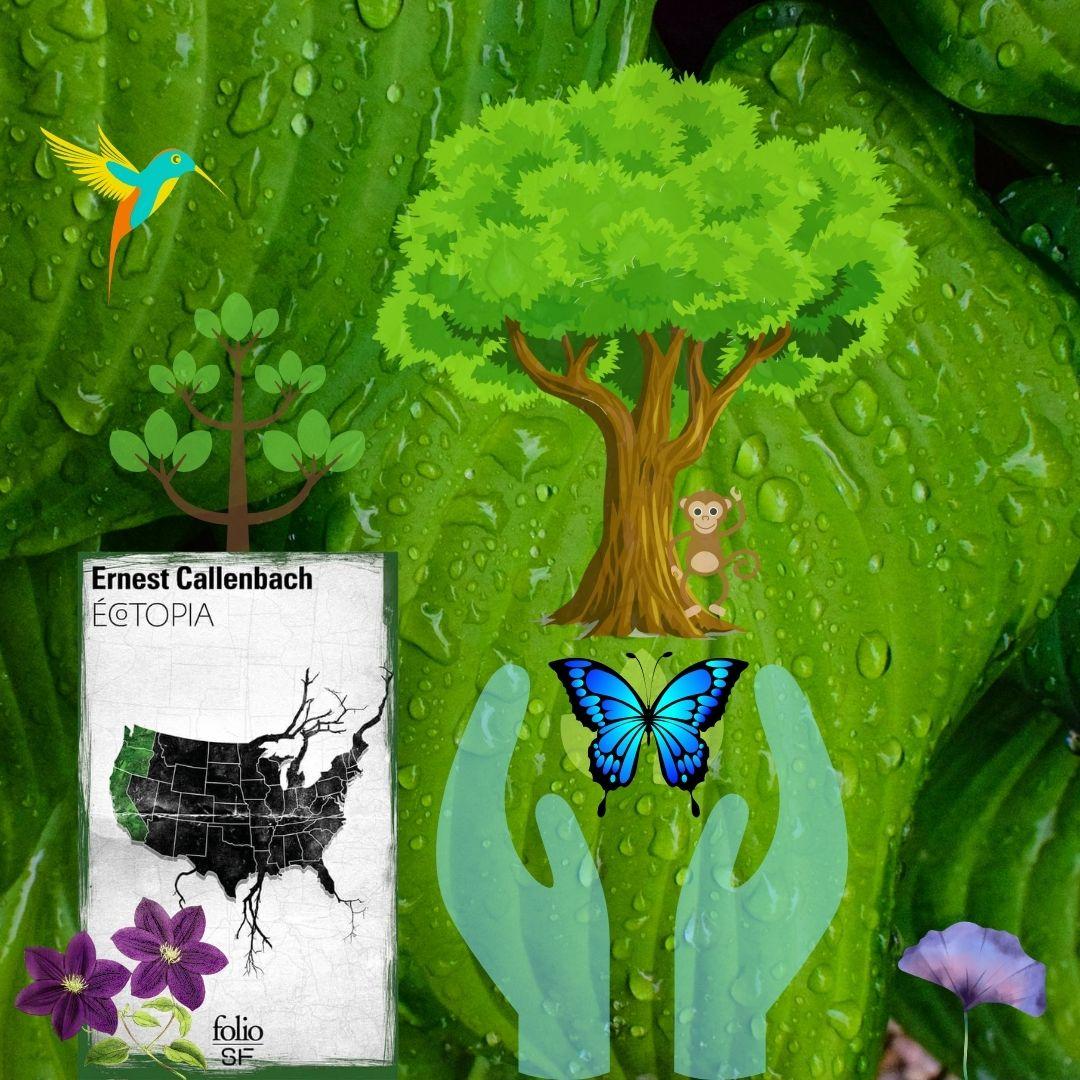 image pour article Ecotopia