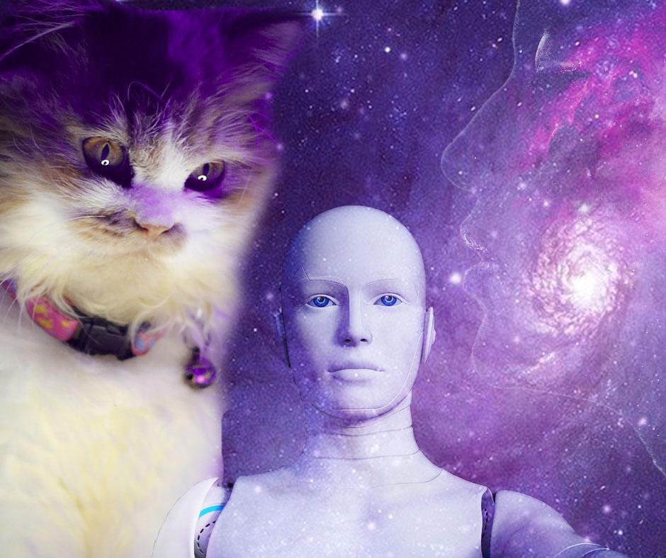 Photomontage pour article empire des chats - Scifilisons