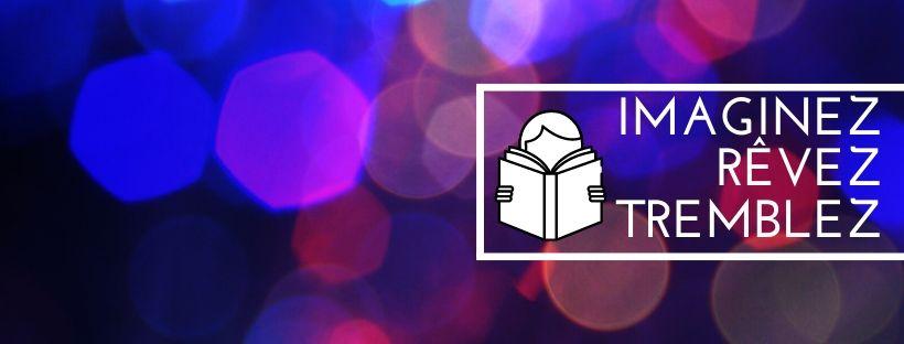 bannière panorama livres